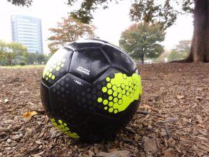 ブログチャレンジ68日目 サッカー ナビスコ杯 決勝  ほぼ日刊を目指しモブログも併用