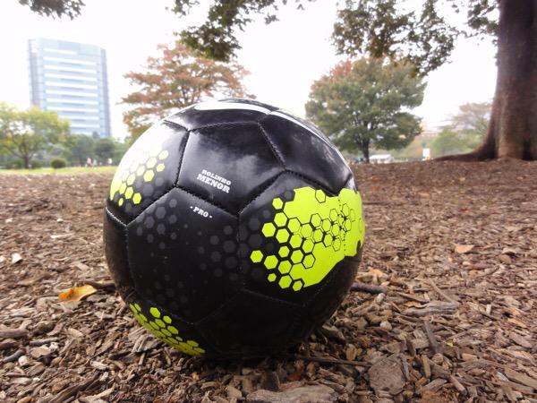 ブログチャレンジ102日目 サッカー天皇杯 決勝 ほぼ日刊を目指しモブログも併用