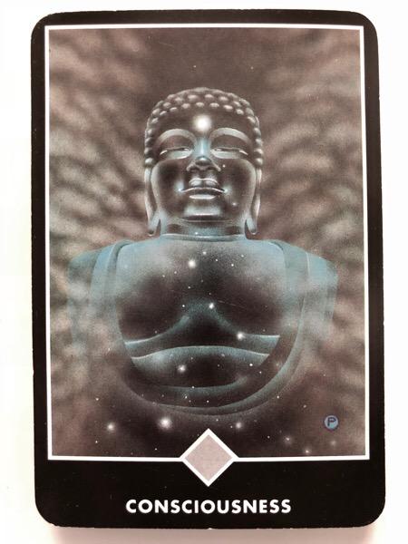 CONSCIOUSNESS 意識 OSHO禅タロット 1077日目 曇天ウォーキング 20180613