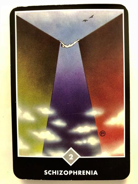 SCHIZOPHRENIA 精神分裂症 OSHO禅タロット 1090日目 曇天ウォーキング 20180626