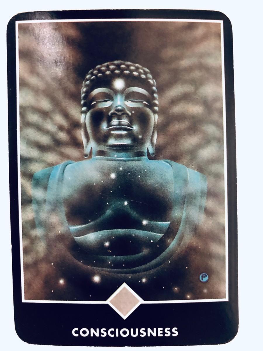 CONSCIOUSNESS 意識 OSHO禅タロット 1407日目 曇天ウォーキング 20190509