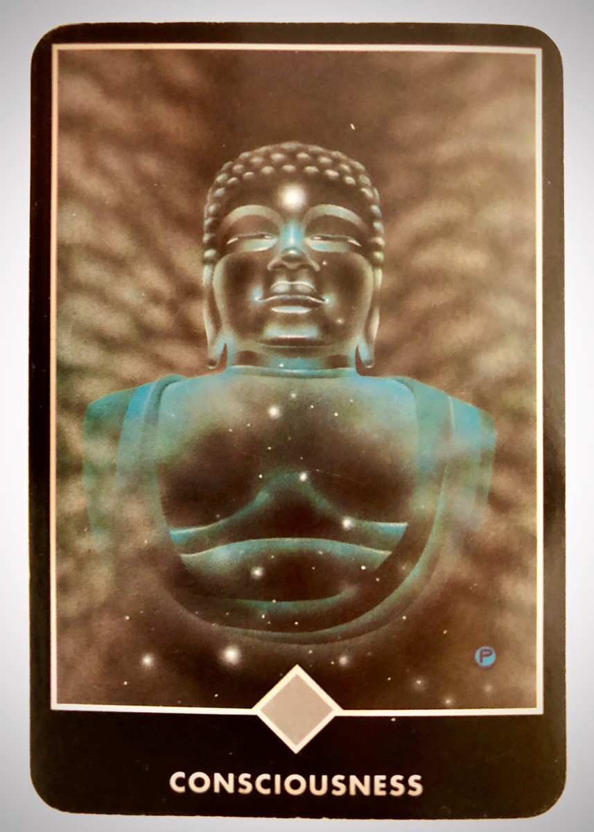CONSCIOUSNESS 意識 OSHO禅タロット 1671日目 雨中ウォーキング 20200128