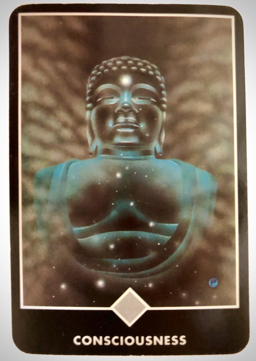 CONSCIOUSNESS 意識 OSHO禅タロット 1740日目 朝陽ウォーキング 20200406