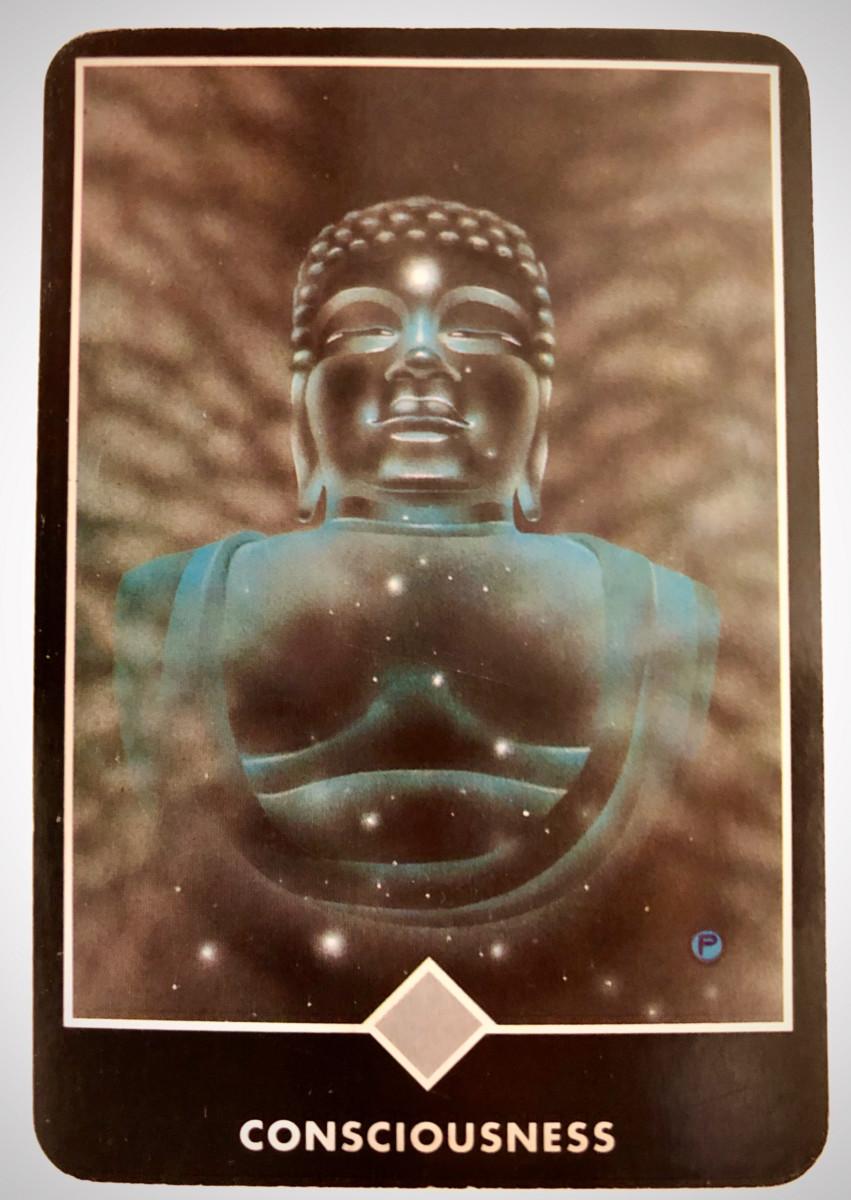 CONSCIOUSNESS 意識 OSHO禅タロット 1746日目 曇天ウォーキング 20200412