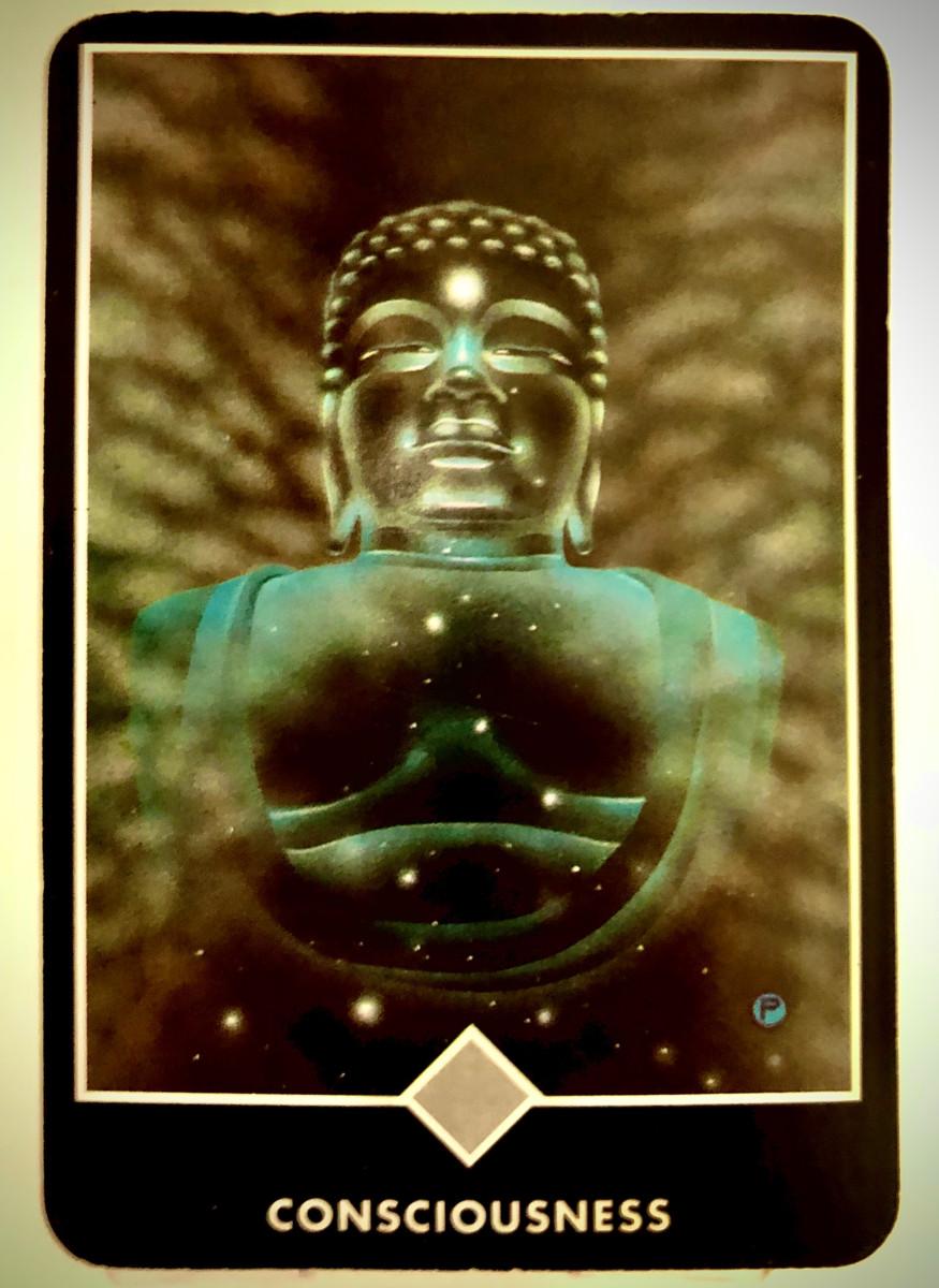 CONSCIOUSNESS 意識 OSHO禅タロット 1798日目 曇天ウォーキング 20200603
