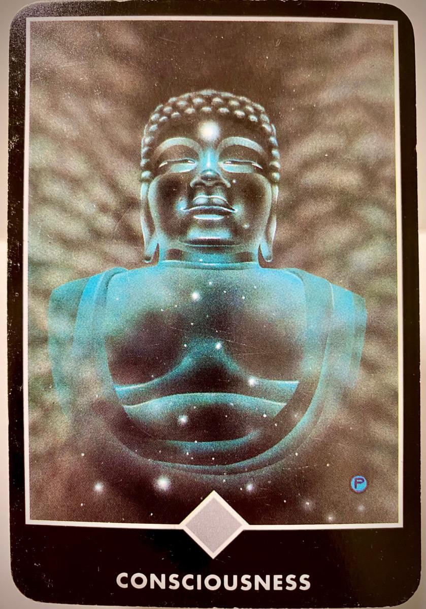 CONSCIOUSNESS 意識 OSHO禅タロット 2106日目 朝陽ウォーキング 20210407